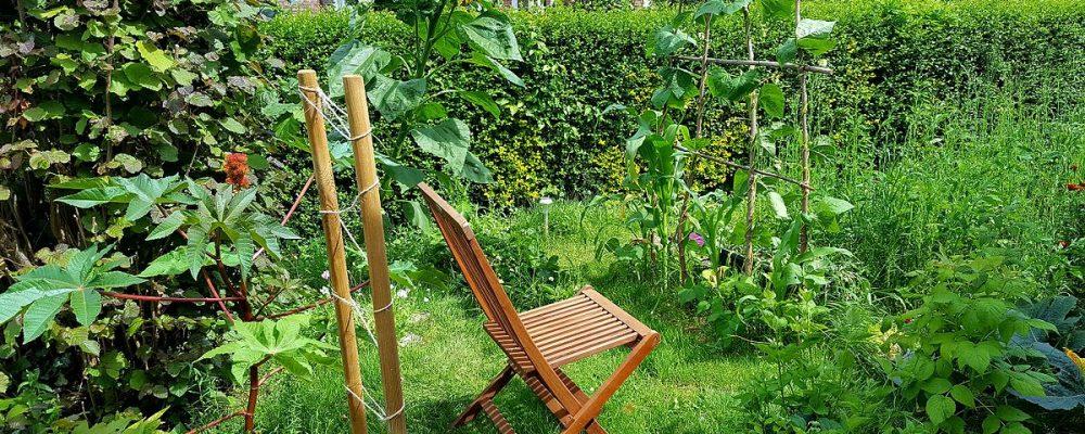 Toutes les formations en permaculture en wallonie et à Bruxelles